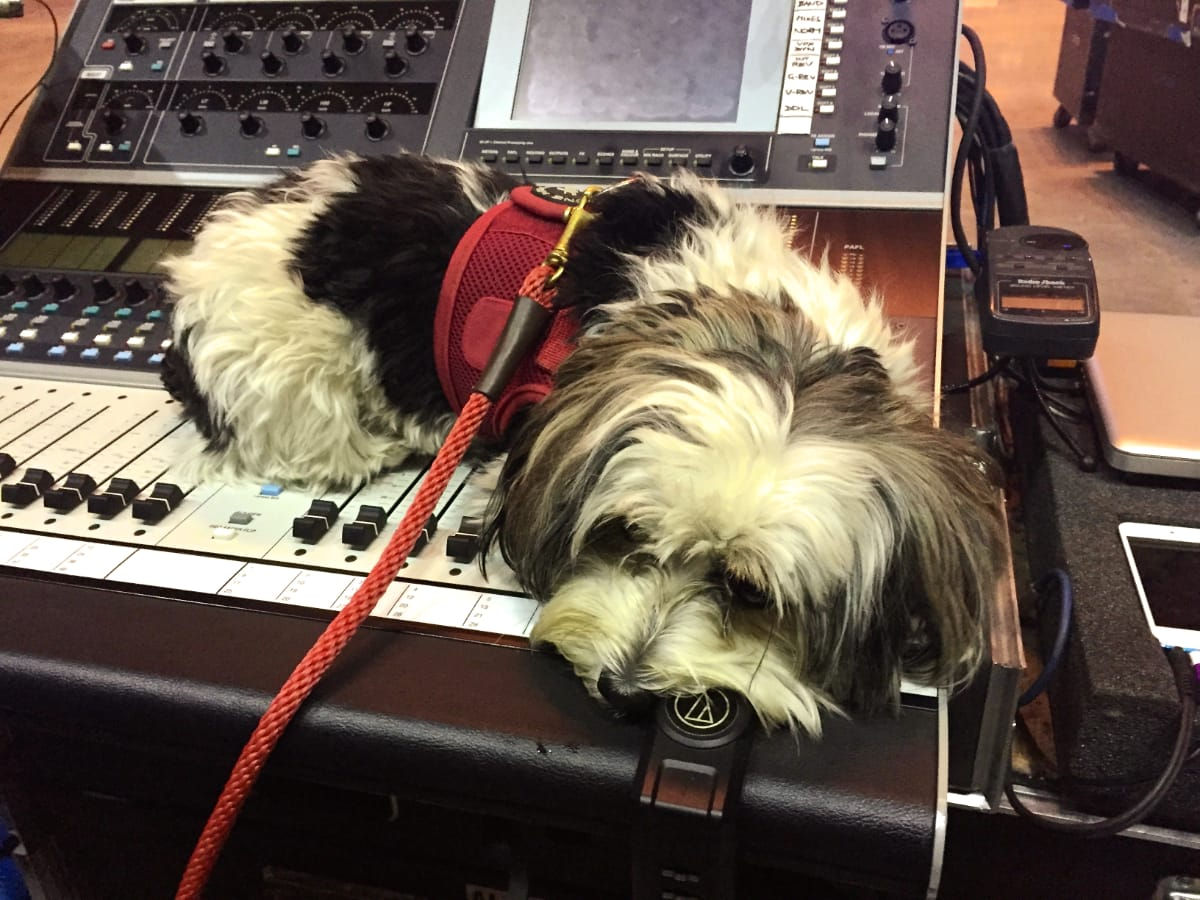 Georgie Girl fading out at FOH